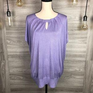 + Size NWT Dress Barn Lavender Knit Top Size 2X